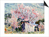 Spring in Provence  1903