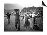 Grape Harvest in the Haut-Gresivaudan in Southern France  1943