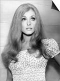The Wrecking Crew  Sharon Tate  1969