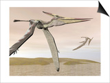 Two Pteranodons Flying over Small Islands
