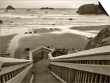 Pathway to Beach - Sepia
