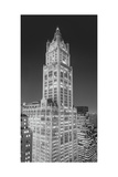 Woolworth Building at Night Panorama