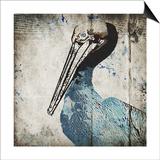 Rustic Blue Pelican
