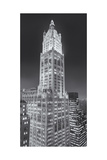 Woolworth Building at Night 2 Panorama