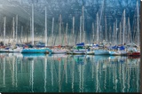 Hout Bay Harbor  Hout Bay South Africa