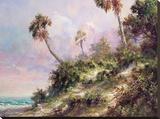 Casperson Shore