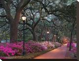 Forsythe Park