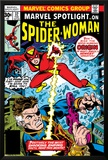 Marvel Spotlight: Spider-Woman No32 Cover: Spider Woman and Nick Fury Fighting