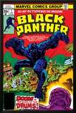 Black Panther No7 Cover: Black Panther Fighting