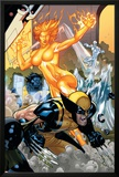 Secret Invasion: X-Men No4 Cover: Wolverine and Phoenix