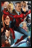 The Amazing Spider-Man No645 Cover: Spider-Man  Black Cat  J Jonah Jameson  and Mary Jane Watson