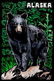 Alaska - Black Bear - Scratchboard