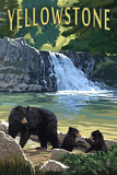 Bear Family - Yellowstone