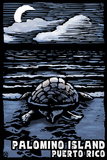 Palomino Island  Puerto Rico - Sea Turtle on Beach - Scratchboard