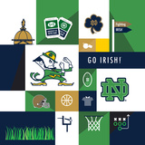 Notre Dame Fighting Irish Collage