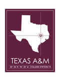 Texas A&M University State Map