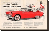 1956 Thunderbird - Exciting