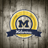 Michigan Wolverines Logo on Wood