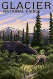 Glacier National Park - Moose and Baby Calf
