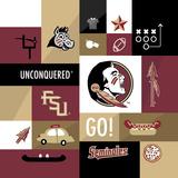 Florida State Seminoles Collage