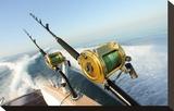 Big Game Fishing Reels & Rods
