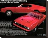 1971 Mustang - Trans-Am Winner