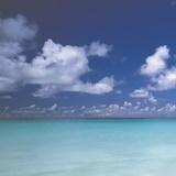 Tropical Waters III