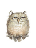 Owl VII