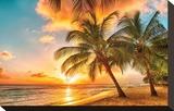 Golden Barbados Beach Sunset