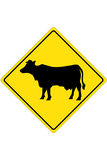 Cow Crossing Sign Poster