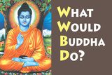 What Would Buddha Do Funny Poster Print
