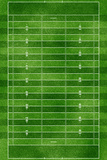 Football Field Gridiron Sports Poster Print