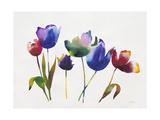 Rainbow Tulips 2