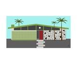 Mid Century Modern House 4