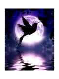 Moonlit Hummingbird