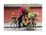 Chengdu Seller