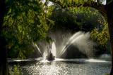 Kew Lake 1