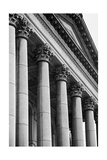 Illinois Capitol Columns BW