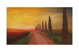 Tuscany Alley Way with Cypress at Dusk