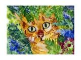 Hiding Tabby Cat