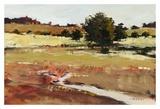 Landscape 368