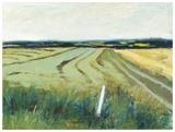 Landscape 322