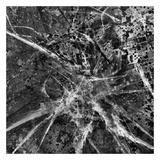 City veins