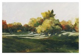 Landscape 254
