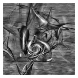 Distorted shape I