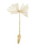 Dandelion 1 Golden White