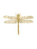 Dragonfly Golden White