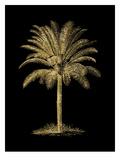 Palm Tree Golden Black