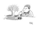 (A man rakes leaves in a tiny bonsai tree  - New Yorker Cartoon