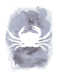 Watercolor Gray Crab